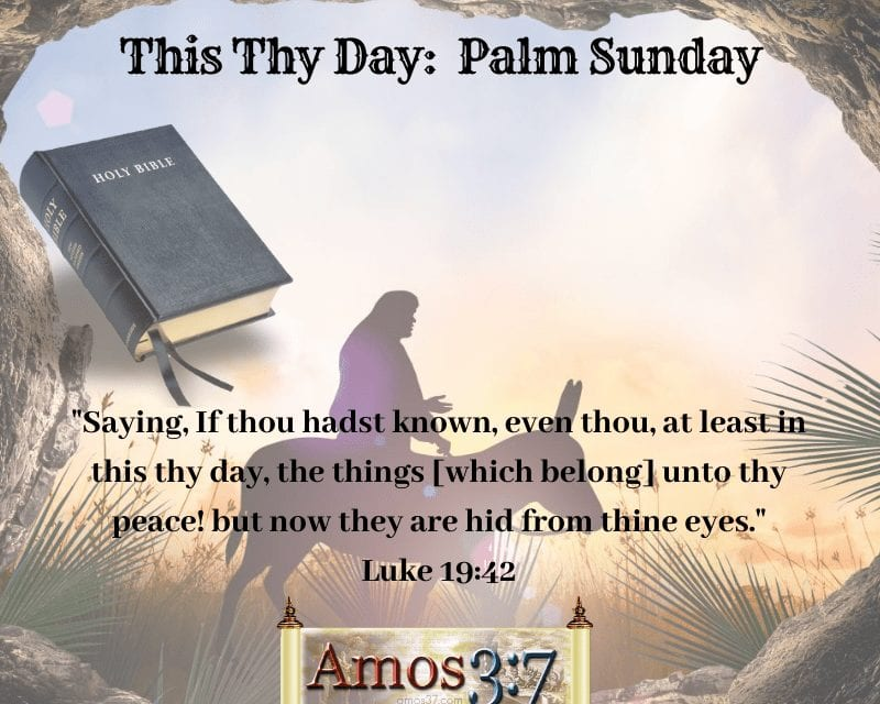This Thy Day