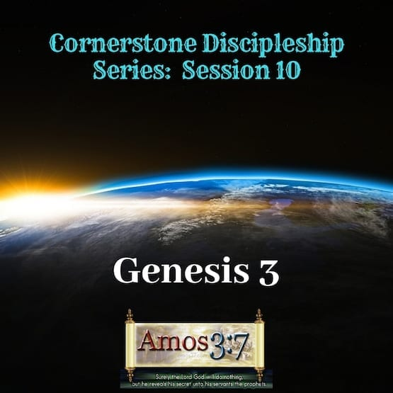 Cornerstone Discipleship Series 1-11 Session 10