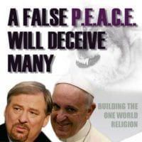 Rick Warren,Peace Plan,UN,goals,ecumenical pope,